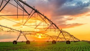 Tarımda Sulama Sistemleri Nelerdir? Tarımda Sulamanın Önemi Nedir?