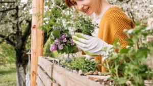 Evde Yeşillik Nasıl Ekilir? Balkon Bahçecilik Fikirleri